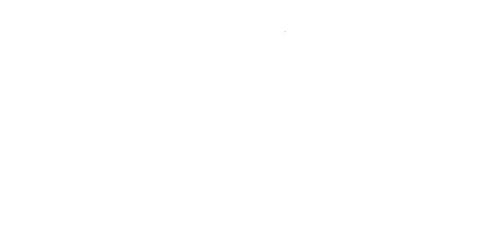 BeardedCamera